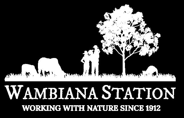 Wambiana Station